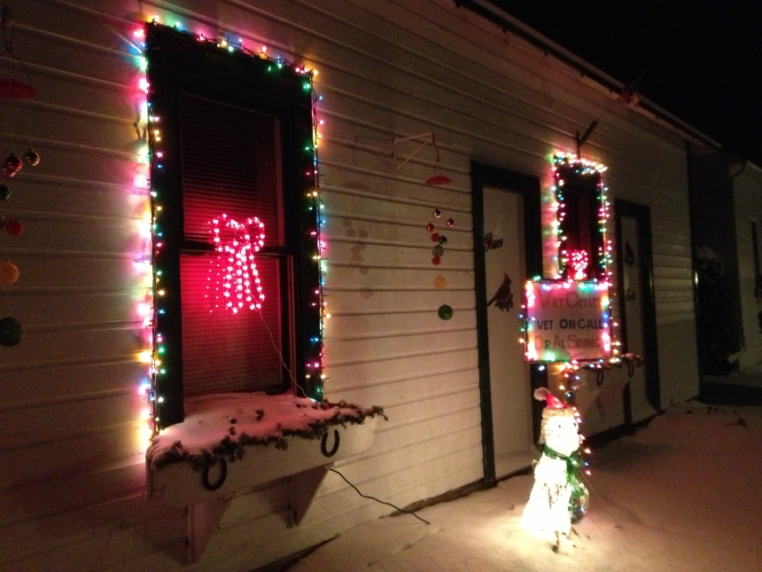 The vet also gets in on all the lights action