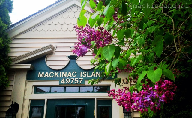 Mackinac Island Lilacs (by the post office)