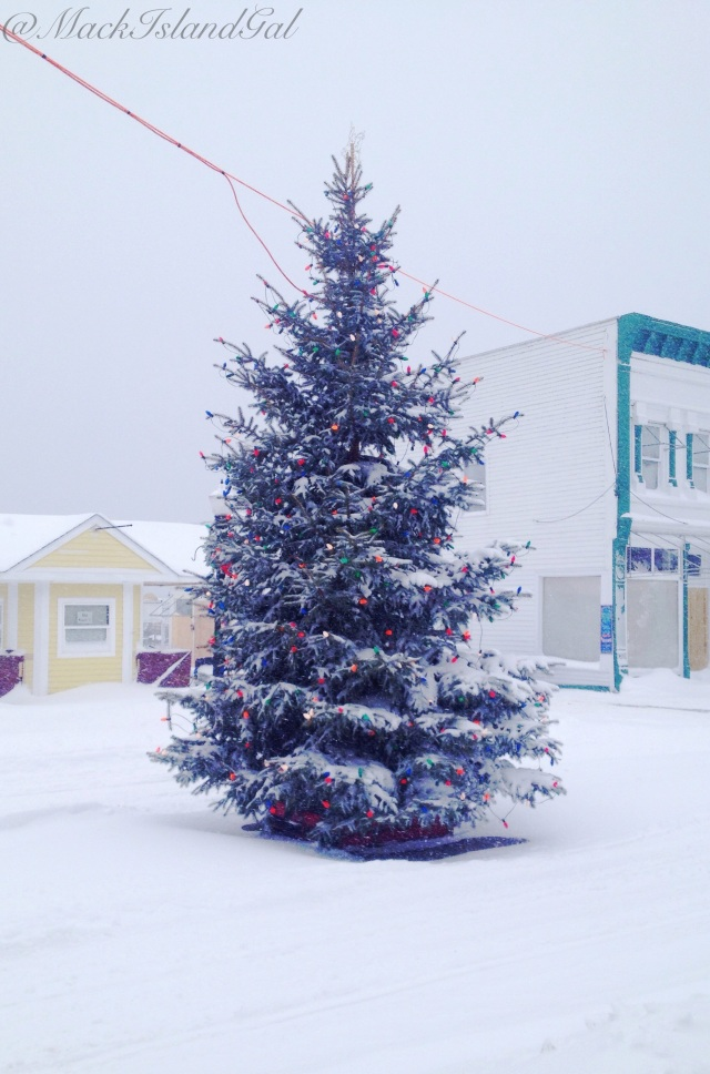 mackinac-island-blog-tree