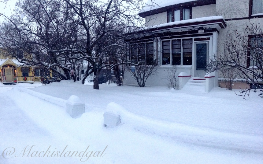 All the snowfall lately has left quite an impact!
