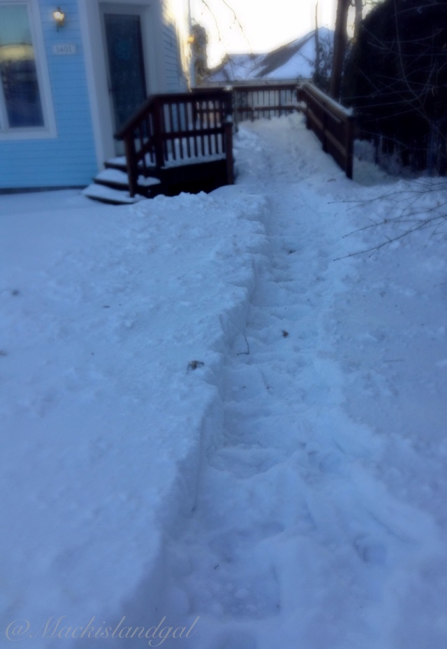 Just barely dug a path to my house...